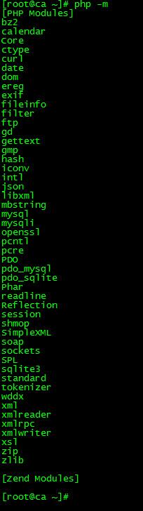 服务器输出.jpg